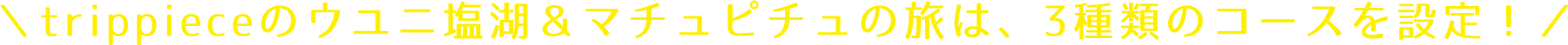 trippieceのウユニ塩湖&マチュピチュの旅は、3種類のコースを設定!